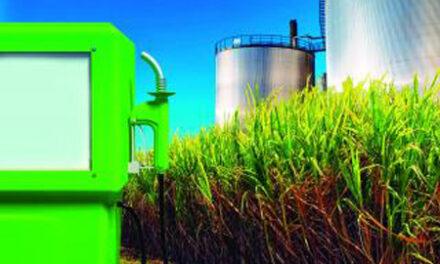 La Provincia elaboró proyecto para producir y comercializar biodiésel