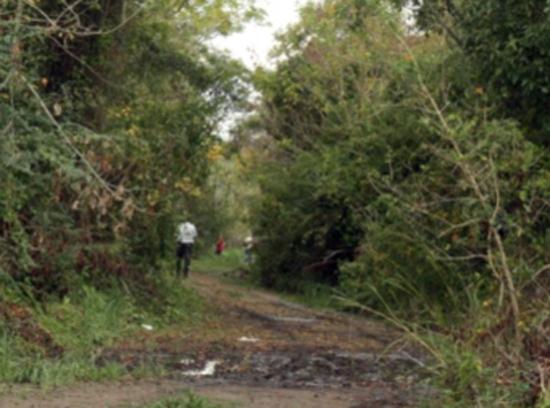 PREOCUPACIÓN: EMPRENDIMIENTO PRIVADO DESTRUIRÁ 900 HECTÁREAS DE RESERVA NATURAL EN HUDSON