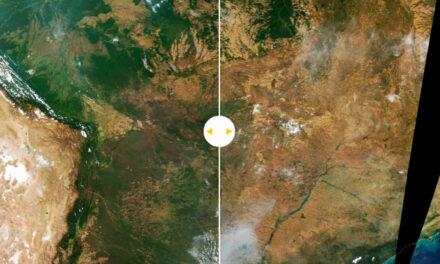 FOTOS SATELITALES DE LA NASA MUESTRAN EL AVANCE DEVASTADOR DEL FUEGO EN AMAZONAS