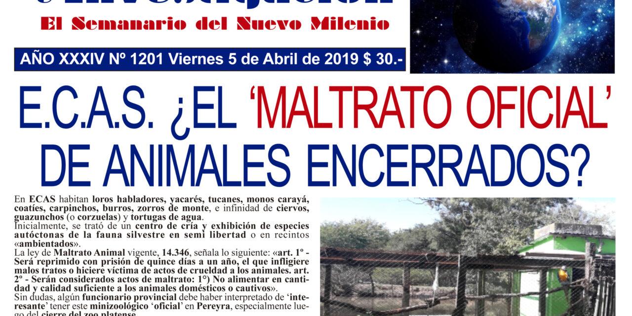 POR MALTRATO ANIMAL Y MALVERSACIÓN DE CAUDALES, ALLANARON EL E.C.A.S.