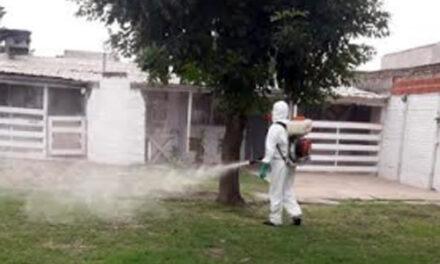 BERAZATEGUI ACTIVA CONTRA EL DENGUE