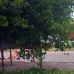 BERAZATEGUI: ATROPELLAN Y MATAN VECINO Y SE DA A LA FUGA