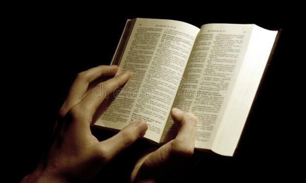DE ESPALDAS A LA BIBLIA, EL PAPA APOYA LA UNIÓN DE HOMOSEXUALES