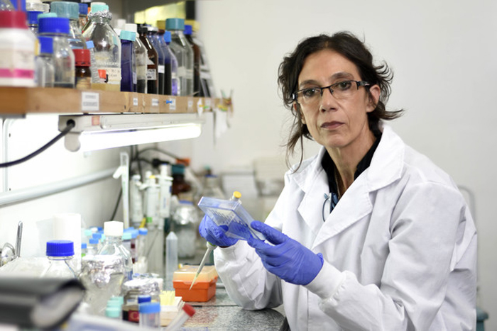 DRA. HOZBOR: «NO HAY NINGÚN MOTIVO PARA CREMAR A LOS FALLECIDOS POR COVID»